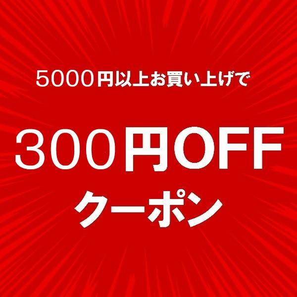 【チトセスポーツ】 ★300円OFFクーポン★ 店内全品対象!
