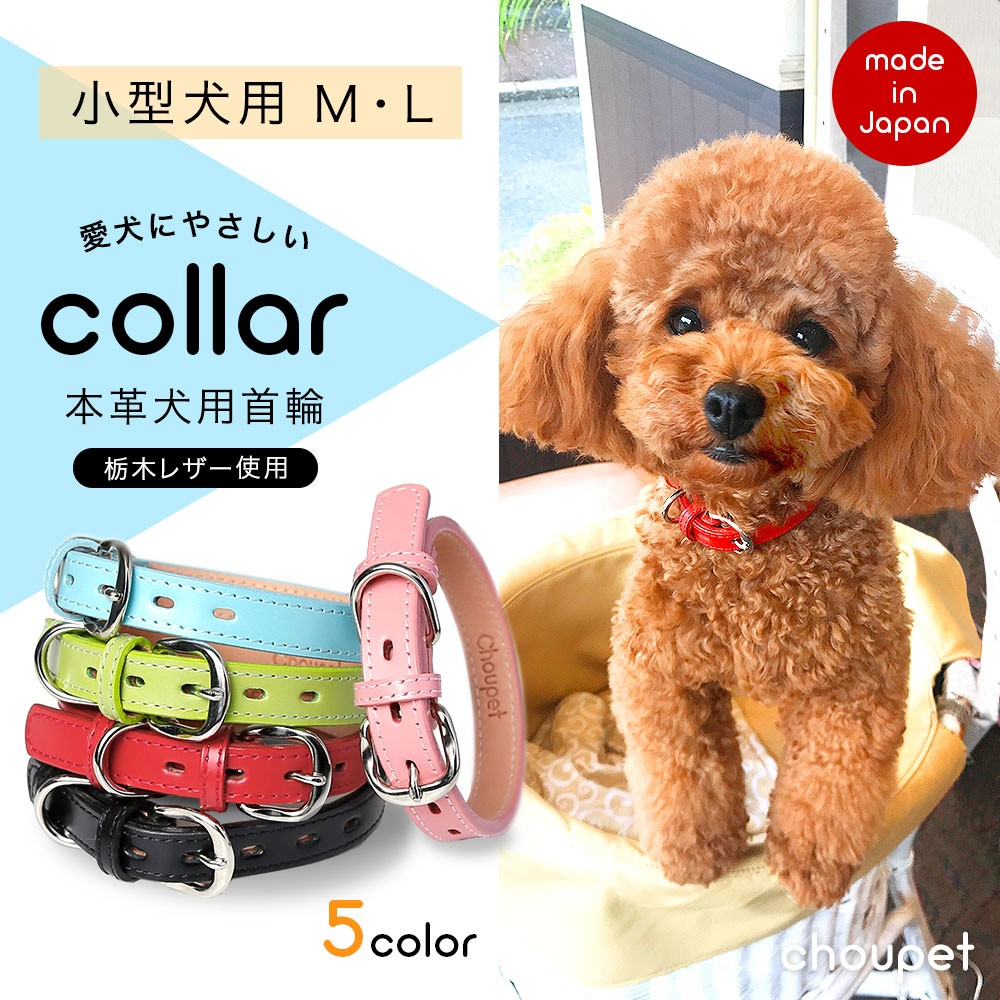 本革 栃木レザー小型犬用首輪