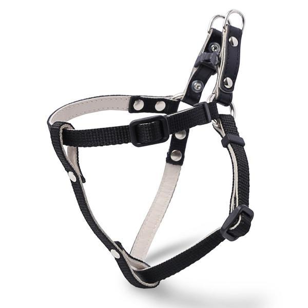 犬 ハーネス 迷子札 名前入り ネームタグ 犬のハーネス 胴輪 小型犬 ナイロン 軽量 おしゃれ かわいい シンプル カラー リード 10mm 首輪|choupet|27