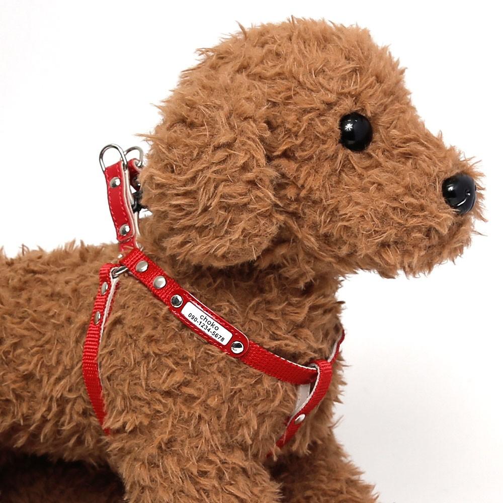 小型犬用のナイロンハーネス