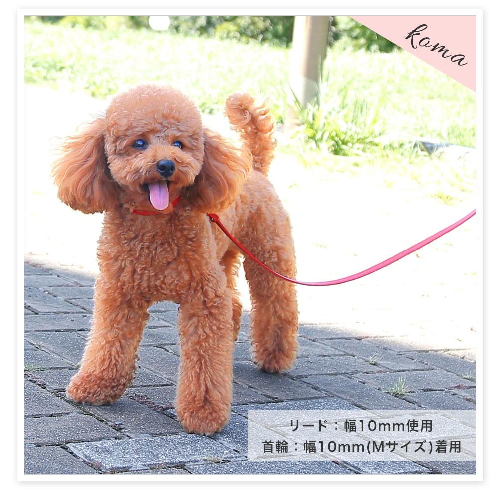 小型犬用の本革リード 栃木レザー