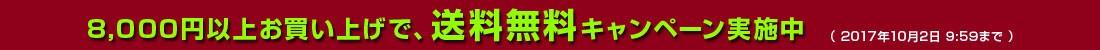 8千円以上送料無料キャンペーン中