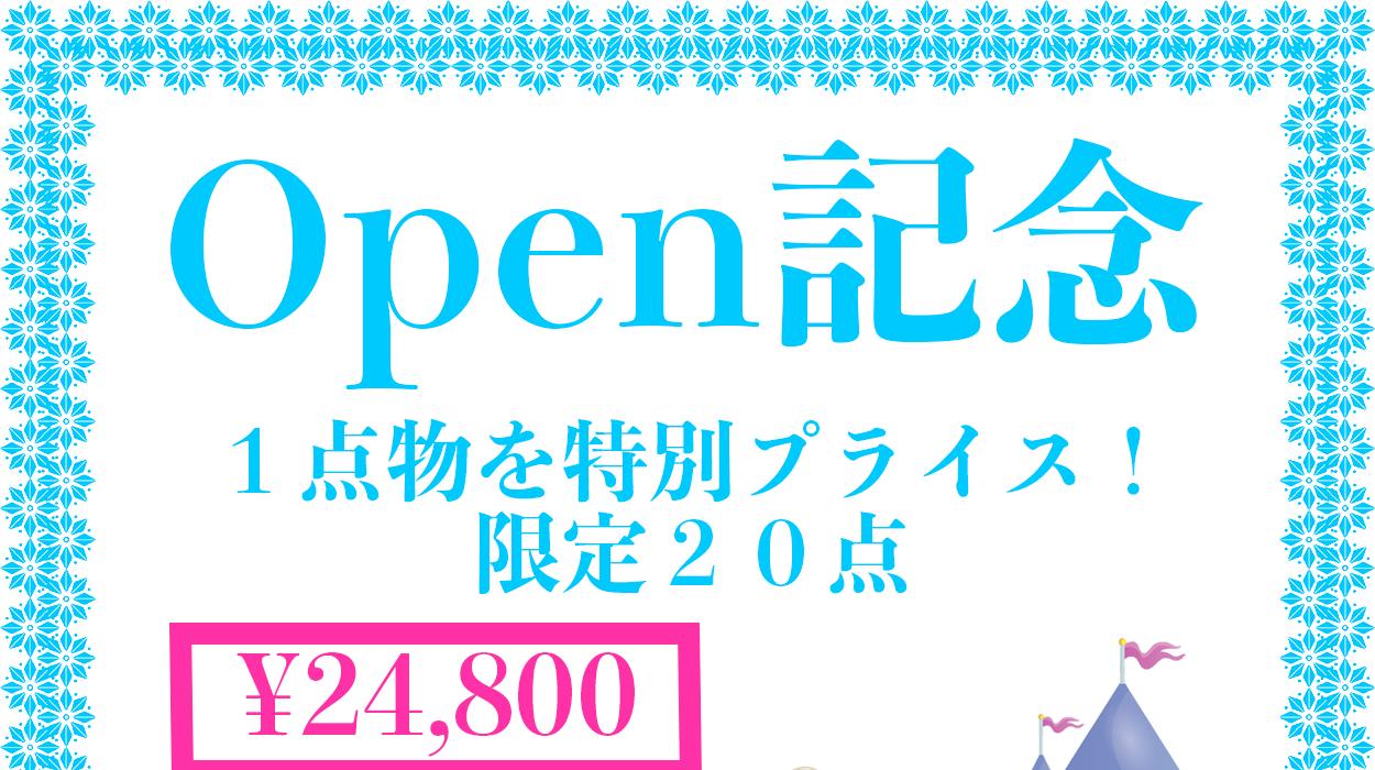 ぽっちゃりサイズ 13号以上 Open記念1