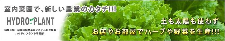 お店やお部屋でハーブや野菜を生産!!天候に影響されない水耕栽培!