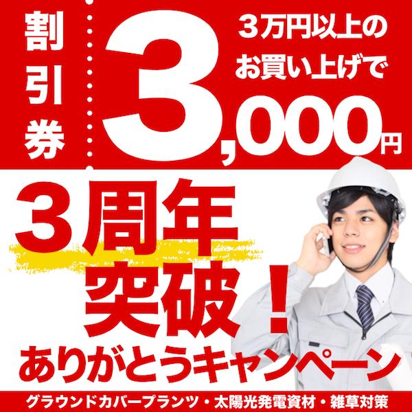【8/24まで】まとめ買いのチャンス! 3000円引き!! Yahoo!ストア出店 3周年記念 ありがとうキャンペーン
