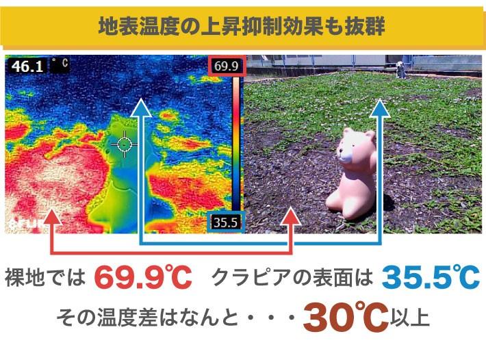 地表温度の上昇抑制効果も抜群です。