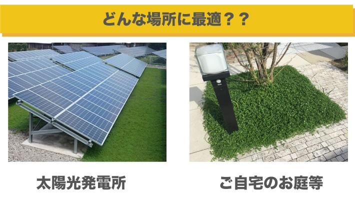 クラピアは太陽光発電所やご自宅のお庭に最適です。