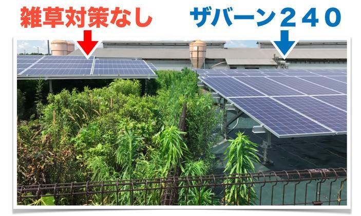 ザバーンの効果の写真 太陽光発電所の比較