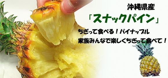 スナックパイン(ボゴール)ちぎって食べるユニークなパイナップル