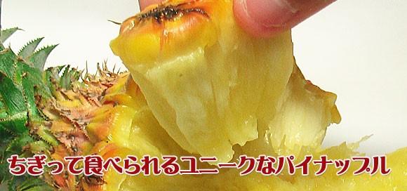 みんなでちぎって食べられるユニークなフルーツ
