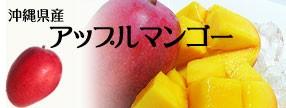 沖縄県産 アップルマンゴー