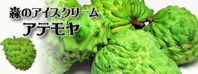 沖縄県産 アテモヤ
