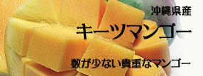 沖縄県産 キーツマンゴー