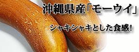 沖縄県産 モーウィ(赤毛瓜) 野菜