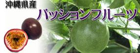 沖縄県産 パッションフルーツ