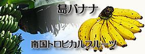 沖縄県産 島バナナ