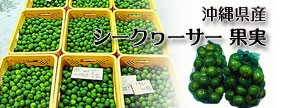 沖縄県産 シークヮーサー果実