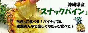 沖縄県産 スナックパイン