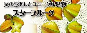 沖縄県産 スターフルーツ