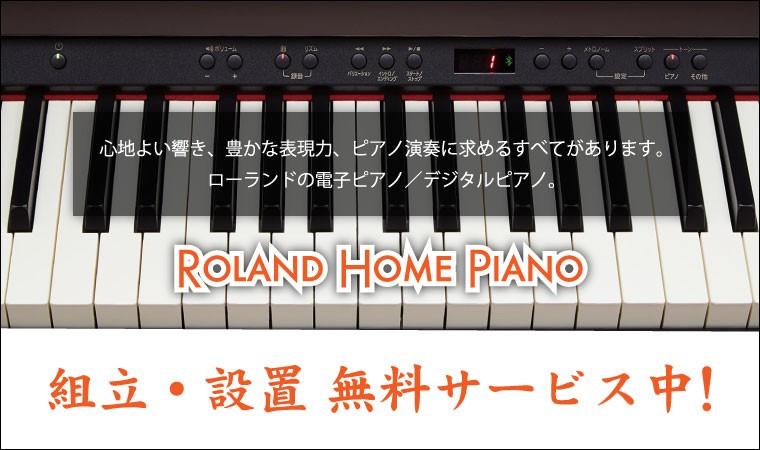 Roland 組み立て設置