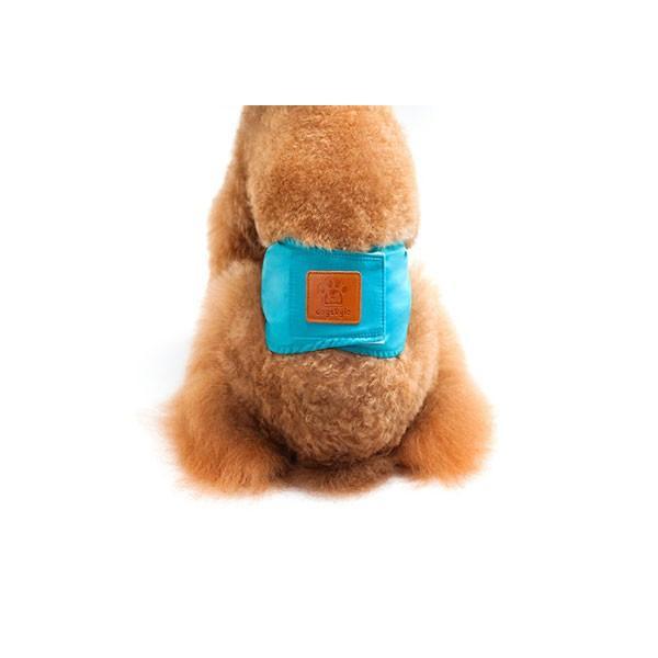 犬用マナーベルト 犬用 マナーバンド おむつカバー ドッグウェア ドッグウエア トイレ おしっこ失敗 レビューを書いて追跡なしメール便送料無料可|cincshop|10