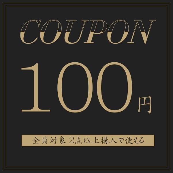 2点購入100円OFF