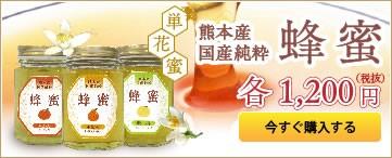 熊本県産純粋『蜜柑』蜂蜜