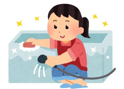洗浄マジック | カビ
