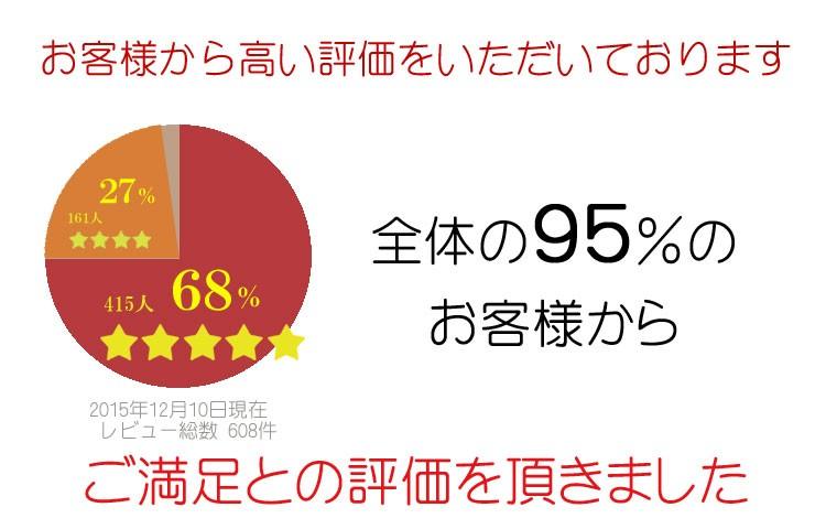 95%のお客様からご満足との回答を得ました