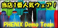 PHENIX DEMOTEAM