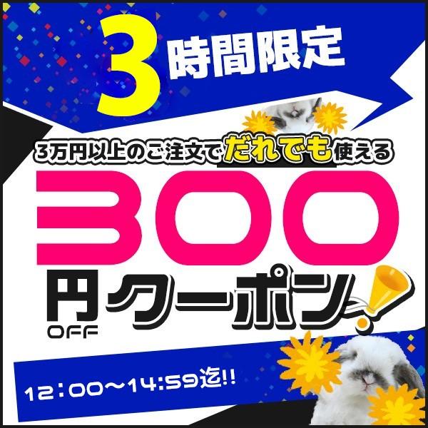 【3時間限定】300円OFF★Happyクーポン♪(3万円以上のお買い物) 【家電と住設のイークローバー】