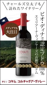 コヤム/チリワイン/COYAM/未来ジパング ワイン/ワイン 当日発送