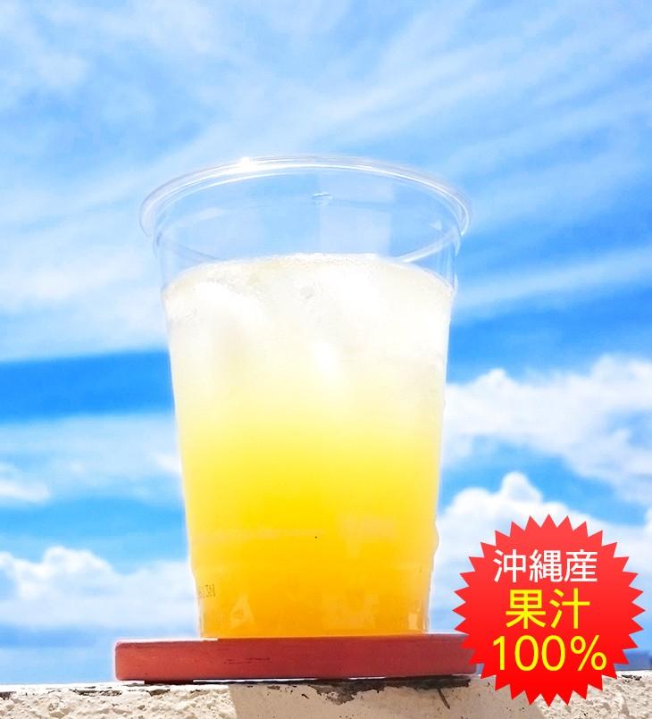 JAおきなわシークワーサー果汁100%