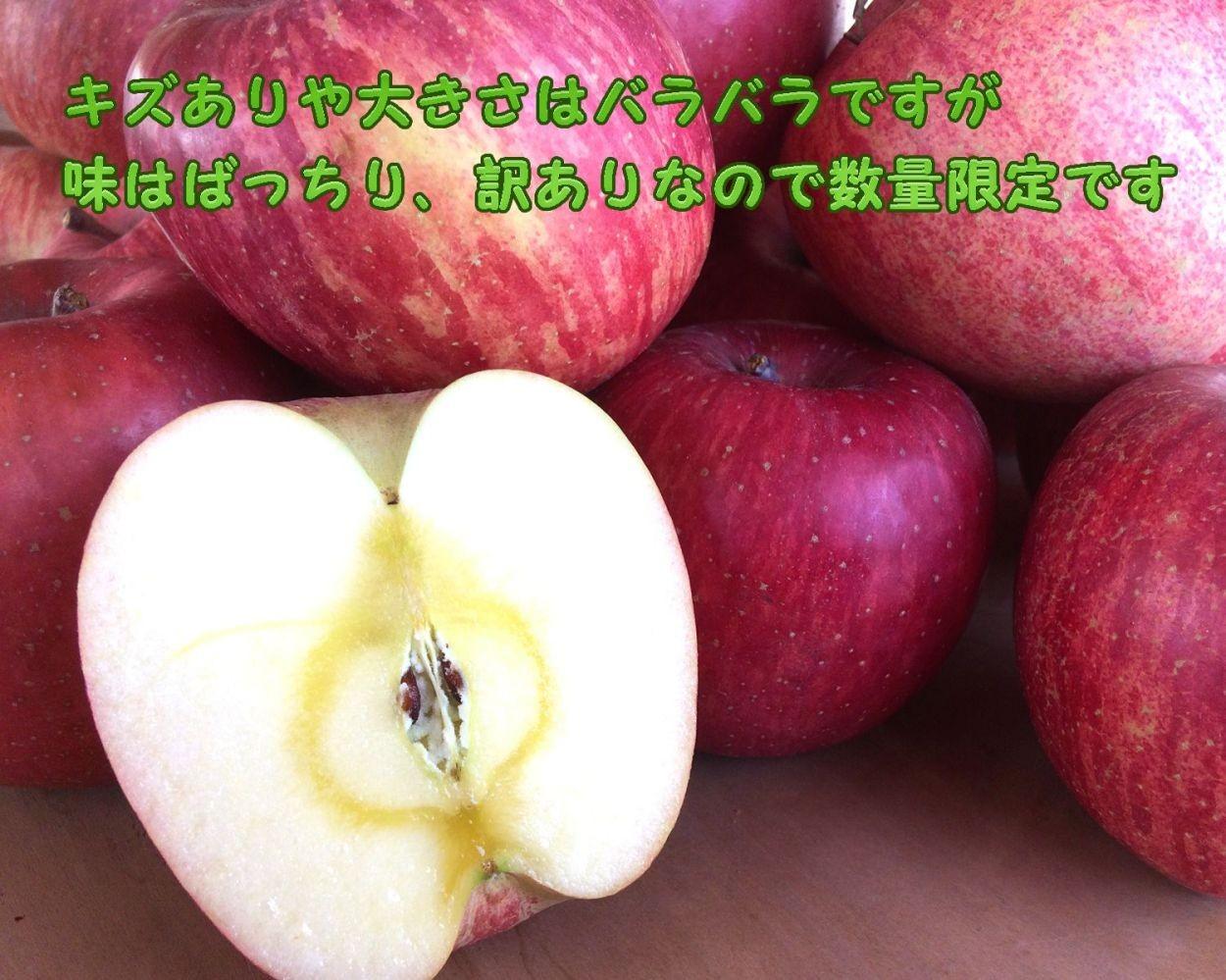 信州産リンゴ
