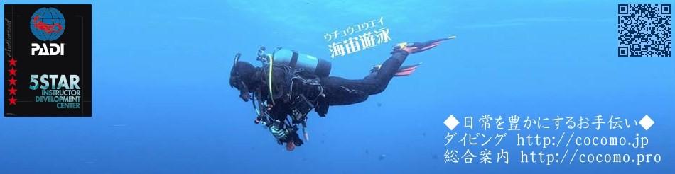 安心のPADI公認ストア-ダイビングショップココモ