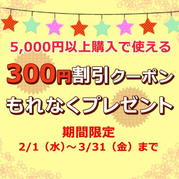 2~3月期間限定!300円割引特別クーポン☆プレゼント