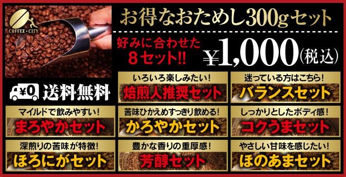 おためし1000円セット