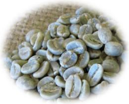 コロンビア・スプレモ生豆