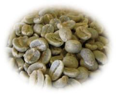 ホンジュラス生豆