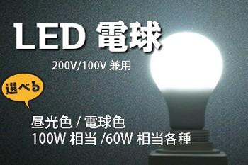 LED 200V/100V兼用電球