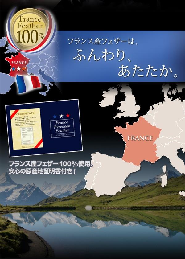 布団 セット 送料無料 フランス産フェザー100%羽根布団8点セット ベッドタイプ Plume プルーム 画像4