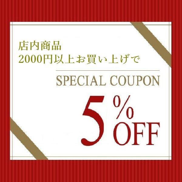 お買い物金額合計2000円以上で5%OFFクーポン!