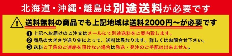 北海道沖縄送料別途