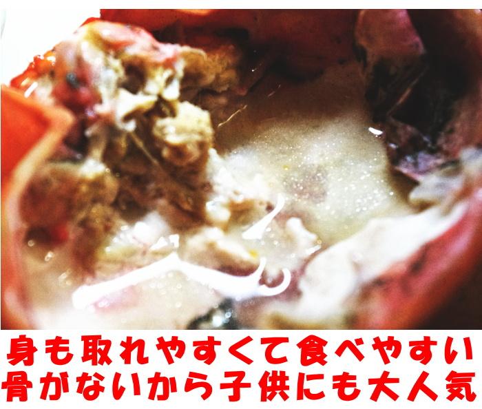 鳥取未冷凍紅ずわい蟹ベネ2