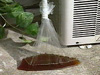 超電水,エアコン洗浄剤,エアコンクリーナー