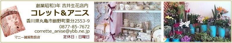 〜マニーの雑貨、バラ雑貨、ポタリングキャット〜コレット&アニス