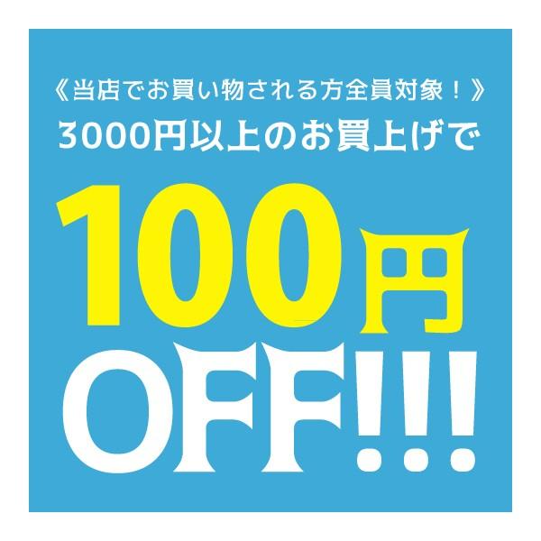 オープン記念!【3000円以上お買い上げで100円OFF】クーポン