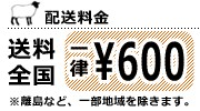 配送料金一律600円