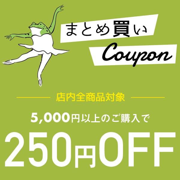 ★まとめ買い割引★ 5,000円以上のご購入で250円OFF!