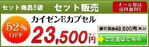 カイゼンEカプセル5袋セット販売